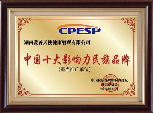 中国十大影响力民族品牌