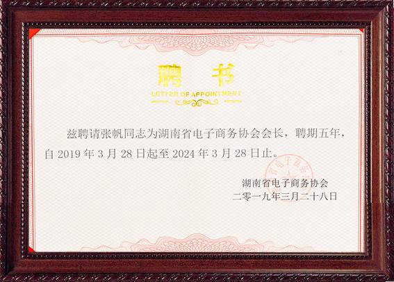 湖南省电子商务协会聘书